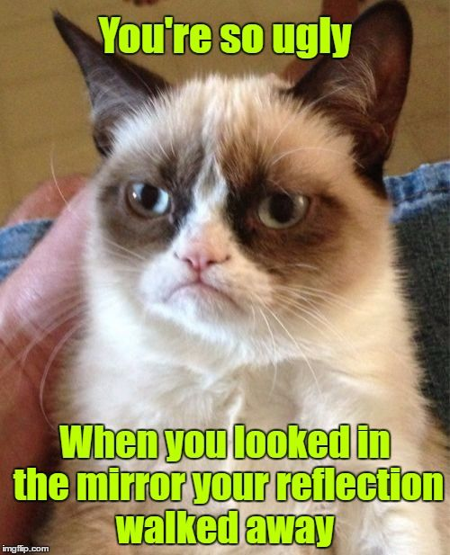 ɢʀᴜᴍᴘʏ ᴄᴀᴛ | You're so ugly When you looked in the mirror your reflection walked away | image tagged in memes,grumpy cat,grumpy cat insults,google images,craziness_all_the_way,grumpy is so disrespectful | made w/ Imgflip meme maker