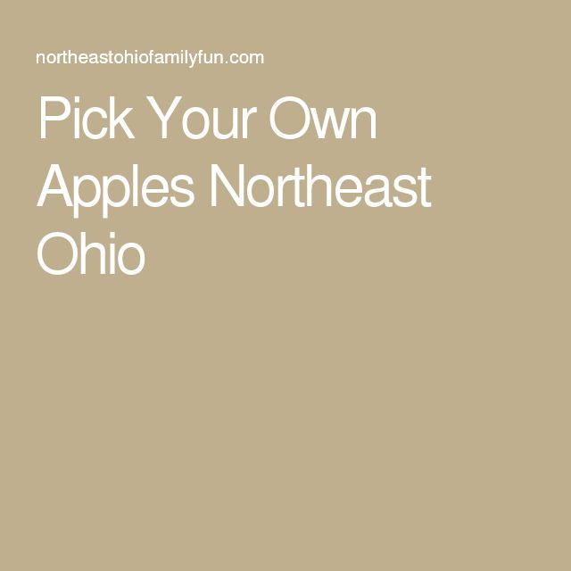 Pick Your Own Apples Northeast Ohio