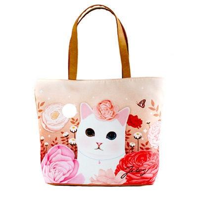 Cat In A Bag Video