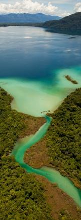 Selva Lacandona #Chiapas #Mexico