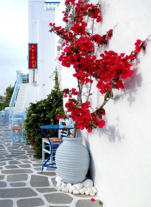A spring fresh day! photo by Secrets of Greece