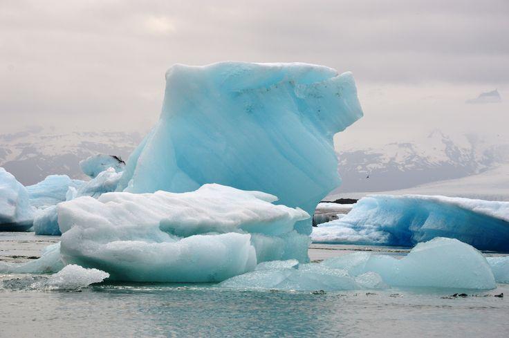 #day3 #Iceland #Jökulsárlón За жизнью лагуны можно наблюдать часами. Новые айсберги причудливых форм откалываются от ледника и заполняют озеро. Они дрейфуют вдоль побережья зимой, а летом тают, и их уносит в море. Каждый айсберг неповторим и имеет свой цвет: белый, синий или даже черный. Такой специфический окрас льдам придает вулканический пепел.