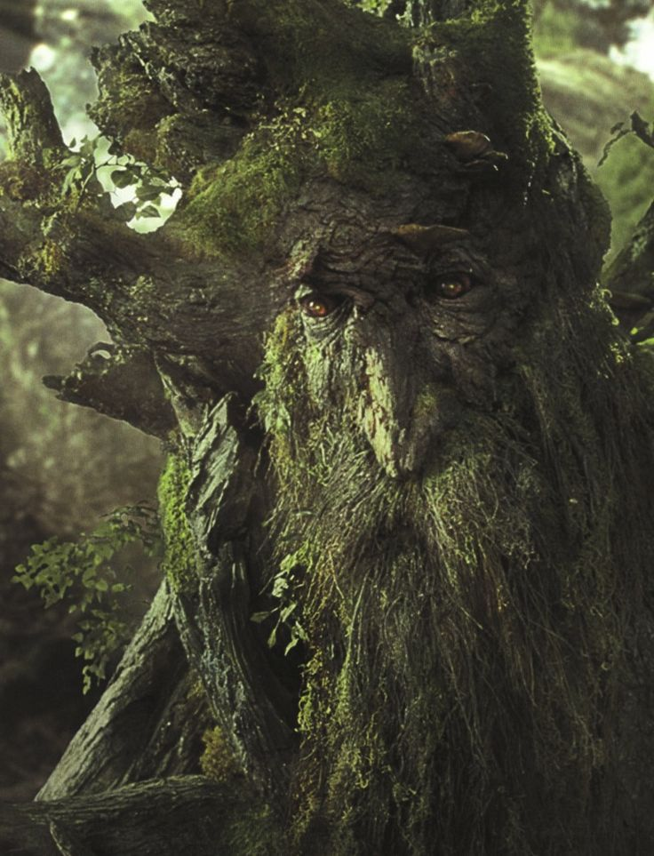 """""""[Old Entish] is a lovely language, but it takes a very long time to say anything in it, because we do not say anything in it, unless it is worth taking a long time to say, and to listen to."""" – Treebeard, from Lord of the Rings"""