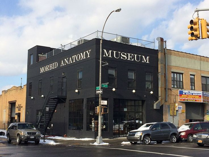 8 Museums in NY you didnt know about. New York City is full of unknown treasures in museum form just waiting to be explore...