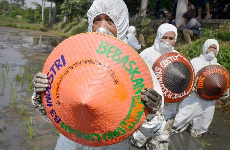 Petani-petani perempuan di Desa Nyalindung, Rancaekek, Kabupaten Bandung. Saat berkoalisi dengan aktivis Greenpeace, Walhi, dan Pawapeling dalam aksi untuk mendesak pencbutan Izin Pengelolaan Limbah Cair (IPLC) dari 3 pabrik tekstil yang mencemari Sungai CIkijing dan pengairan sawah-sawah mereka.