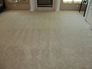 omaha janitorial carpet cleaning carpet cleaning