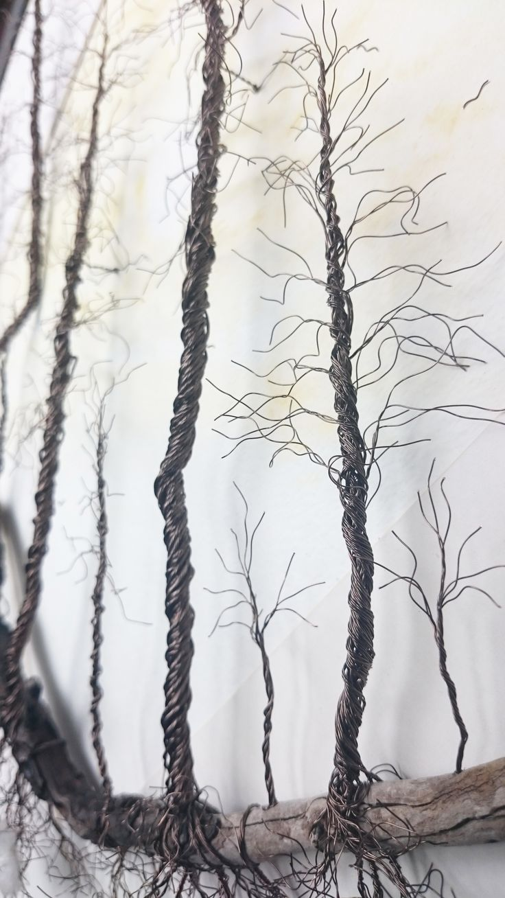 'Forest of Dreams' - Copper Wire Trees on a Driftwood Landscape...