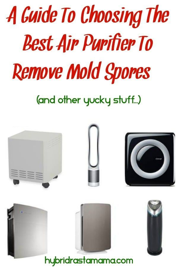 Choosing An Air Purifier To Remove Mold Spores Is Extremely Important Though As It Can Make A Huge Difference In Your Health Both By Helping Lesson