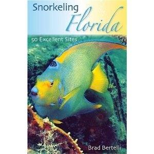 Book Snorkeling FL