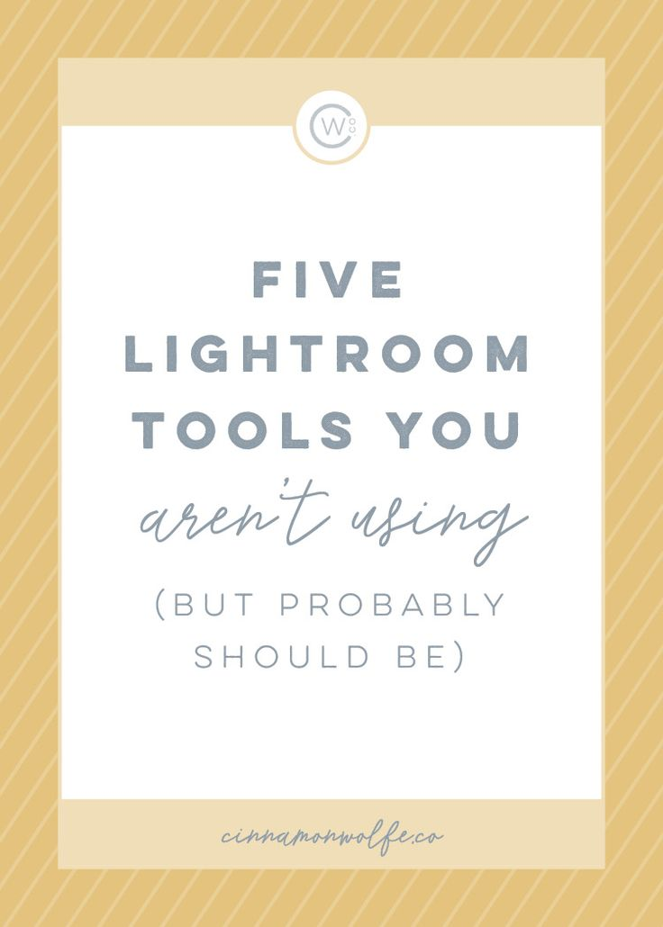 Five Lightroom Tools You Aren't Using (But Probably Should Be) | Cinnamon Wolfe Co. | Content | Photography Tips | www.cinnamonwolfeco.com