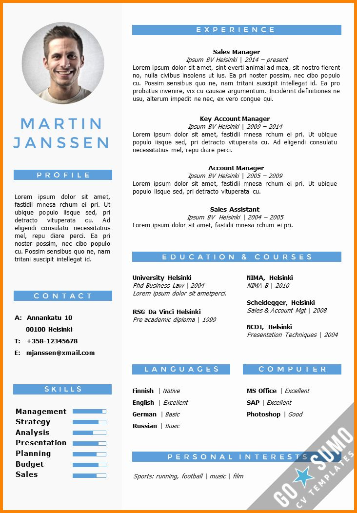 Resume Examples In Word Format Inspirational 7 English Cv Example Word Resume Template Word Curriculum Vitae Template Resume Template Examples