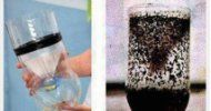 Κήπος Στα Μεσόγεια: Εξοντώστε τα ενοχλητικά κουνούπια με φυσικό τρόπο ...