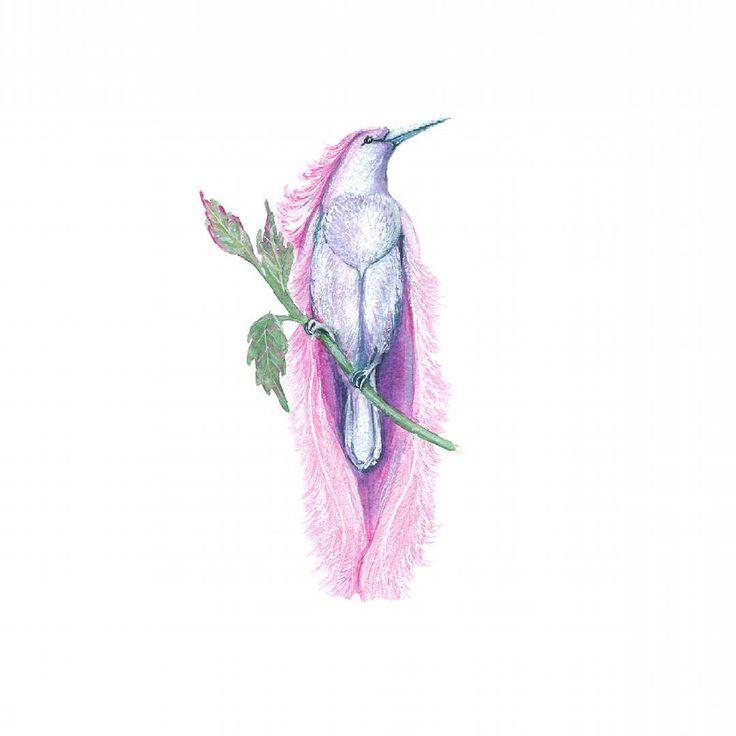 Райская птичка ;-) Акварель и гуашь ----------------------- Логотипы и иллюстрации, готовые и на заказ - здесь: @aquarelle_logo Заглядывайте, подписывайтесь, буду очень вам рада ;-) ------------------------- #art #watercolor #painting  #дизайнвизиток #drawing #bird #птица  #логотип  #illustration #instaart #aquarelle #watercolorillustration #акварель #cartel_watercolorists  #рисунок  #визитка  #рисуюназаказ #севастополь  #иллюстрация #logo #райскаяптица #waterblog  #дизайн #фирменныйстиль