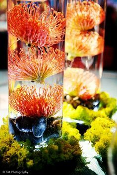 Tropical submerged centerpieces.