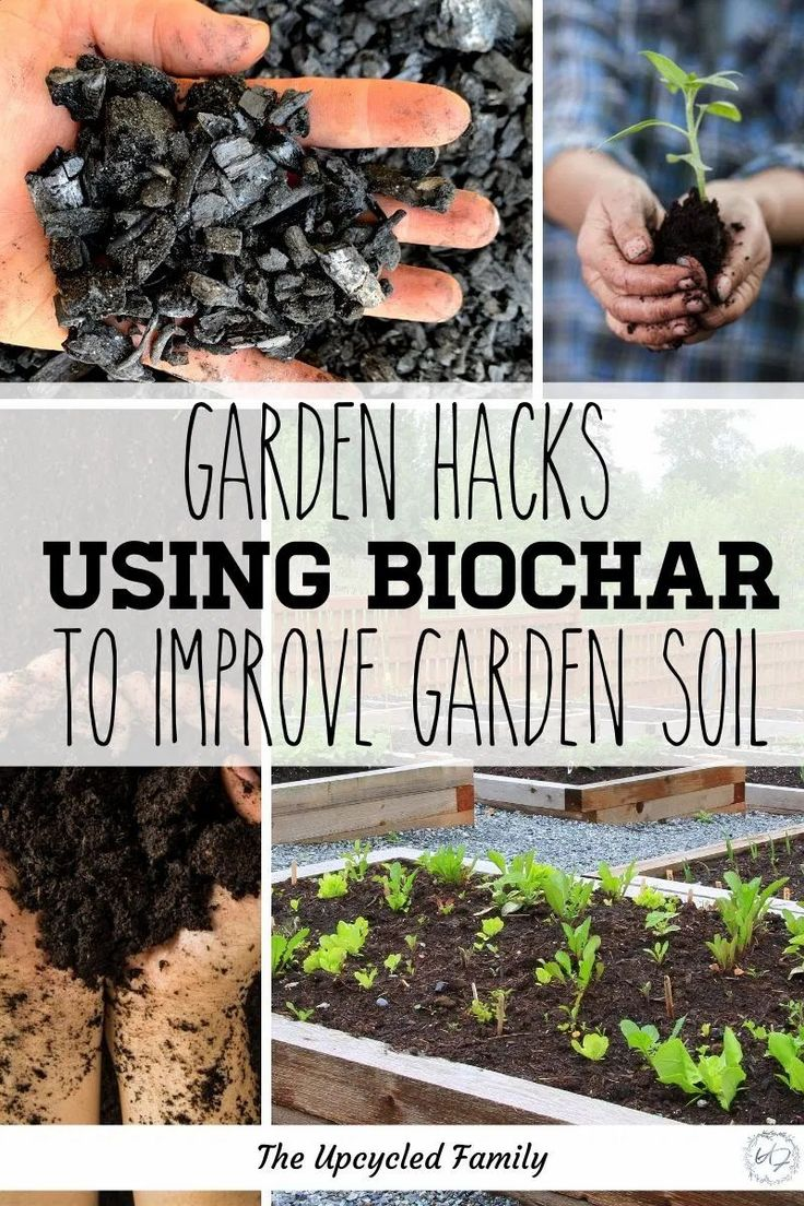 How to make and use Biochar to improve your soil in 2020