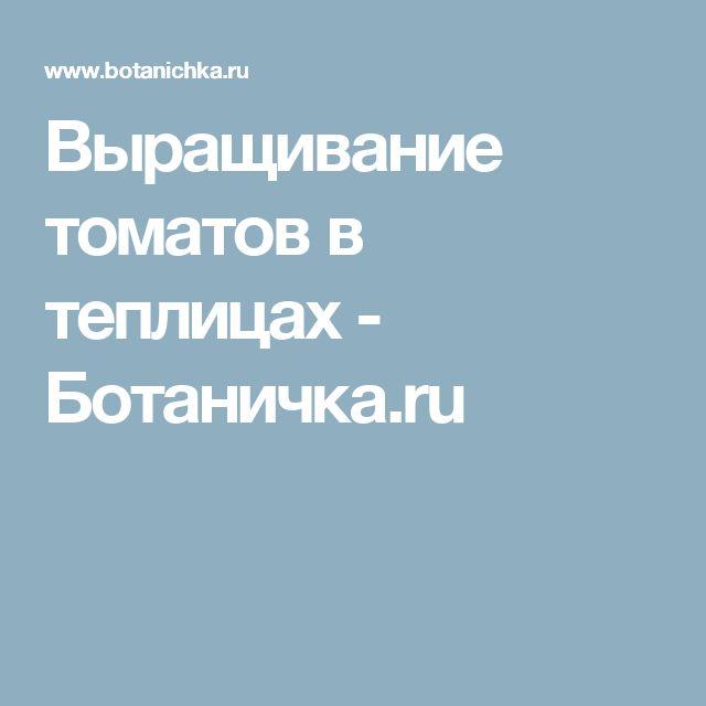 Выращивание томатов в теплицах - Ботаничка.ru
