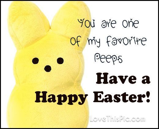 You are one of my favorite peeps happy Easter easter easter quotes easter images easter quote happy easter happy easter. easter pictures funny easter quotes happy easter quotes quotes for easter easter quotes for friends and family
