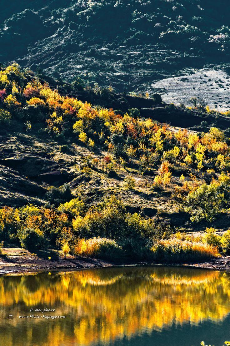 Autumn colors. Salagou lake (Hérault, south of France)