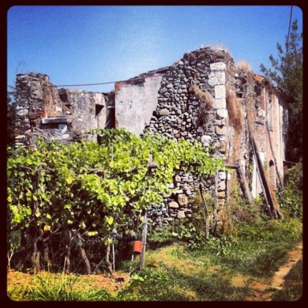 Carrara, vecchie case di campagna