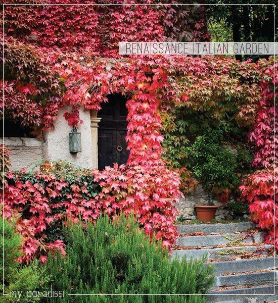 25 Best Ideas About Tuscan Style On Pinterest: Best 25+ Italian Garden Ideas On Pinterest