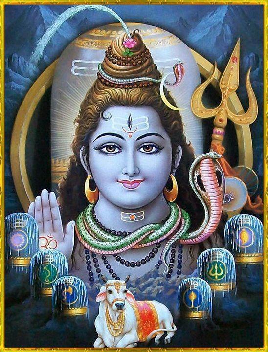 .Lord Shiva, Mahadev - The most important devotee of Krishna.