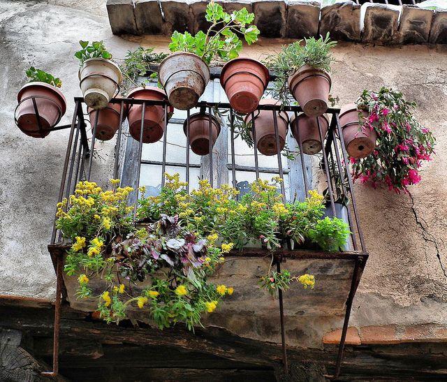 ACEBO, SIERRA DE GATA, EXTREMADURA by toyaguerrero, via Flickr