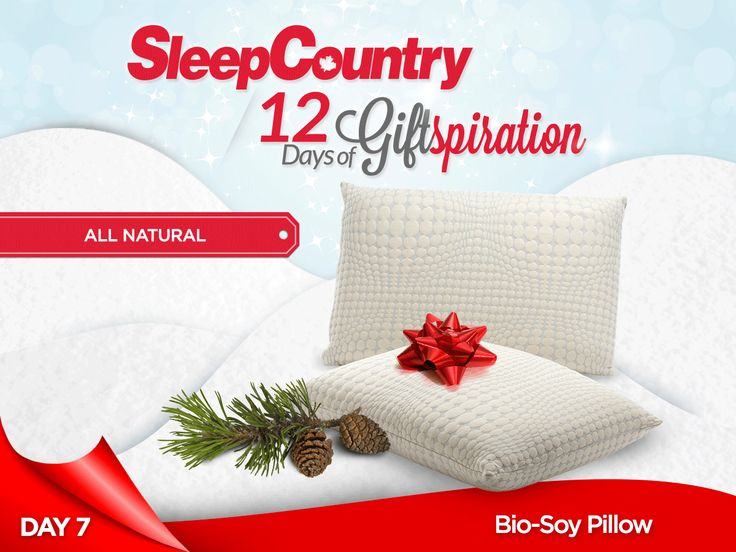 Day 7: Our Blissful Bio-Soy Pillow