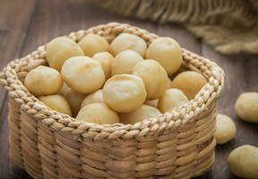 La noix de Macadamia : anti-cholestérol