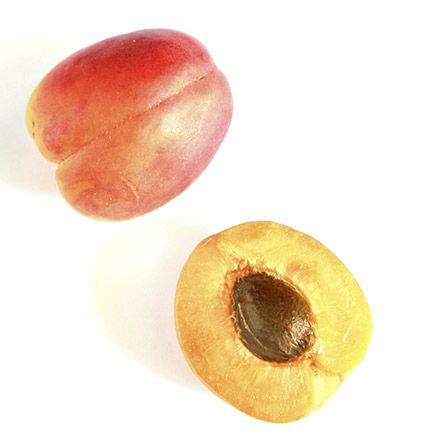 Nourrissante et émolliente, l'huile de noyaux d'abricot est recommandée pour l'hydratation des peaux sensibles et délicates. Elle est très riche en acides gras insaturés ainsi qu'en vitamines A et E. Elle contient plus d'acides insaturés que toute autre huile végétale. Nourrissante et hydratante, elle assouplit la peau et la revitalise naturellement.  #eudoxiaskincare #soinvisage #abricot #hydratant #beautenaturelle #soin