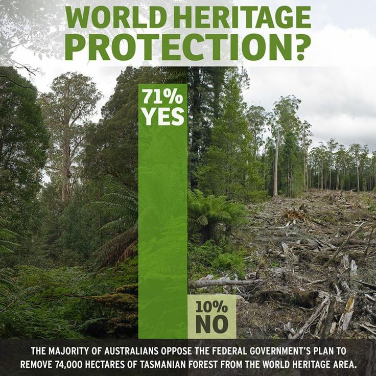 World Heritage Protection
