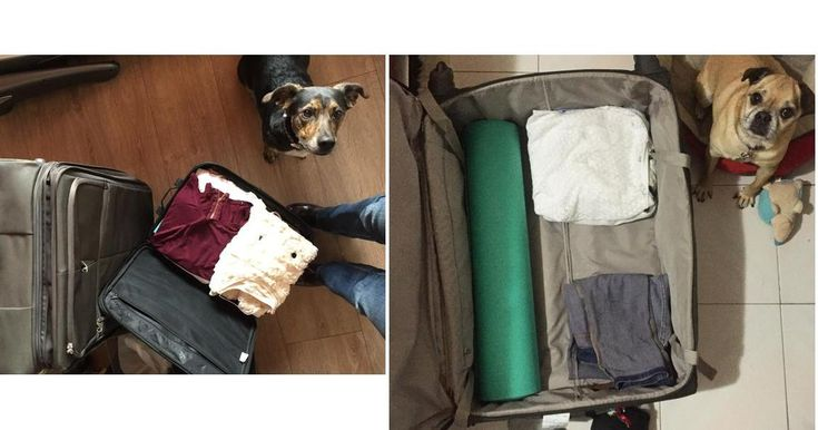 El equipaje básico de un viaje: qué llevar y cómo empacar