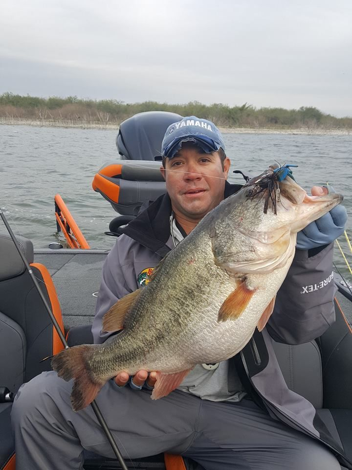17 best images about fishing on pinterest scouts lakes for Falcon lake fishing