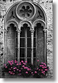www.danheller.com/images/Europe/Italy/Po-Valley/DoorsWins/window-flowers-bwc.jpg
