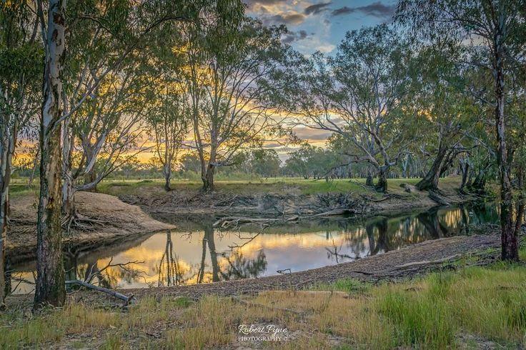 A Billabong Sunset by Robert Pyne