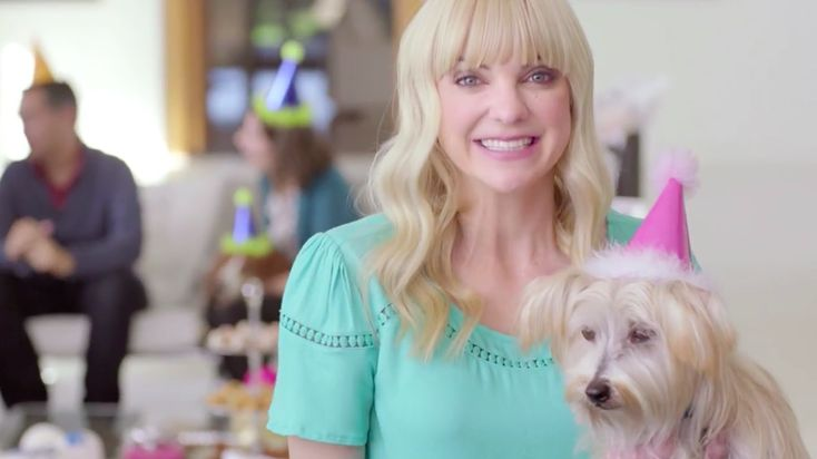 Christopher Guest Channels Best in Show for Brilliantly Bizarre PetSmart Ads Anna Faris, Jennifer Coolidge star