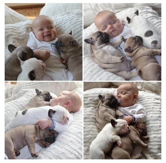 fluffy kid #kids #pug #cute #sleep #dog