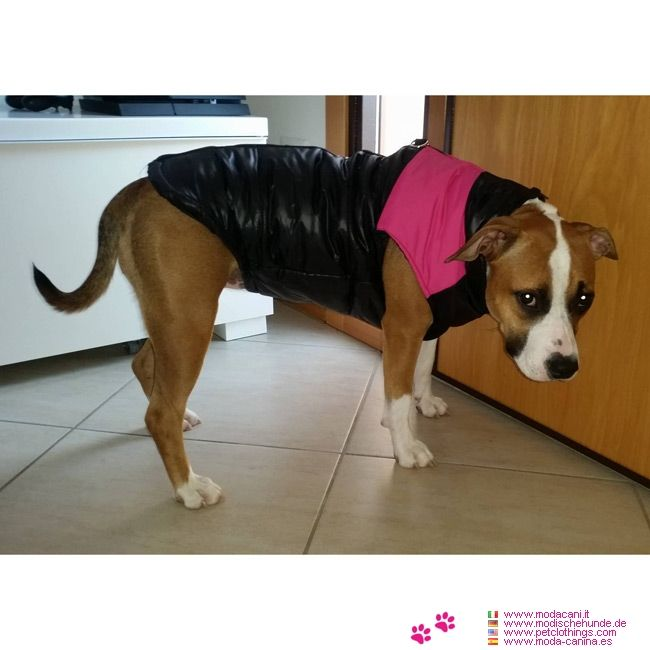 Pink Sleeveless Jacket for large size dogs #PetClothings - Pink Sleeveless Jacket for large size dogs: a windproof jacket made of nylon and terylene. Very easy to wear thanks to the closing on the back.