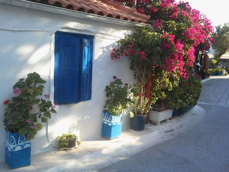 Samos-Pythagorion-white-blue and the bougainville