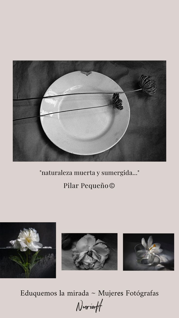 Mujeres Fotografas Great Photographers, Celestial, My Love, Books, Projects, Inspiration, Women, Log Projects, Biblical Inspiration