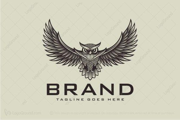 Logo for sale: Wise Owl Logo