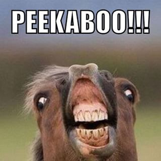 Best 25+ Ugly faces ideas on Pinterest   Little mix funny ...