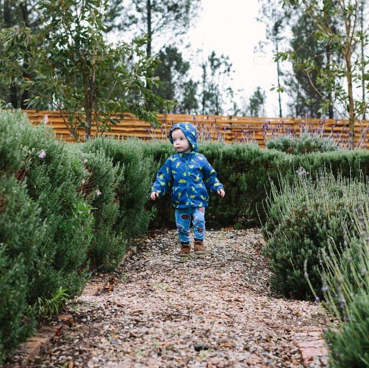 """Exploring the beautiful herb garden at @kolkollodge's King Cabin.  Ben loves his new @maddoncole…"""