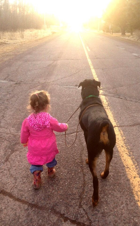 A Girl And Her Dog Out For A Walk Rottweiler Puppies