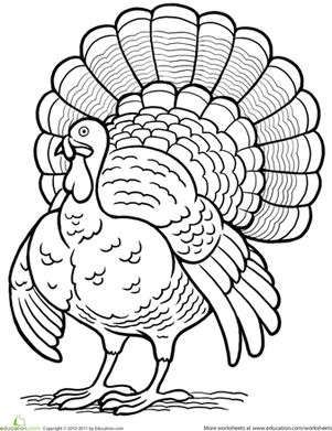 dltk coloring pages fall turkey | 329 best images about Classroom color pages on Pinterest