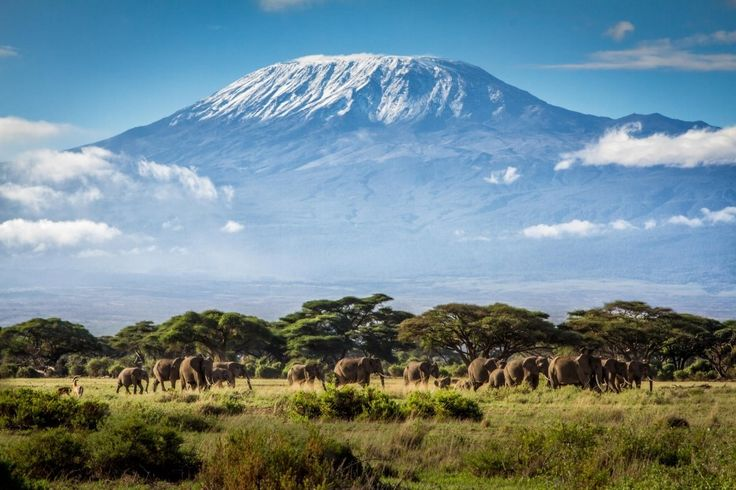 Monte Kilimanjaro, Tanzania -  (16 lugares para conocer antes de morir | Notas | La Bioguía)