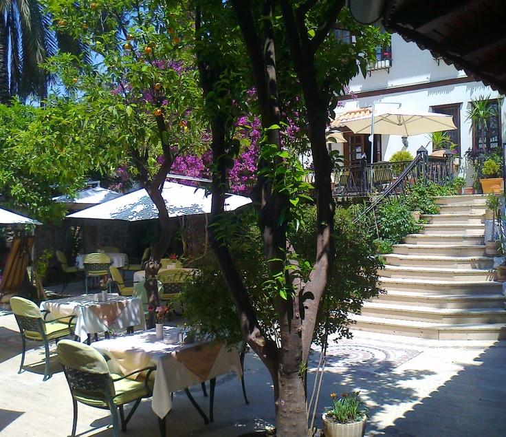 Garden View from Dogan Hotel