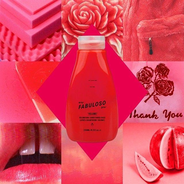 evo® fabuloso pro™ 'watermelon wow' - 230g conditioner base + 60g red. juicy.