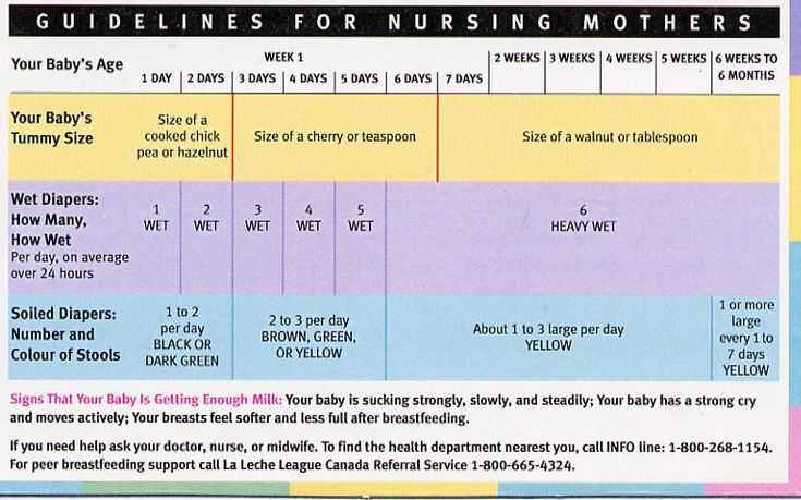 when is the infant feeding guidelines 6 months