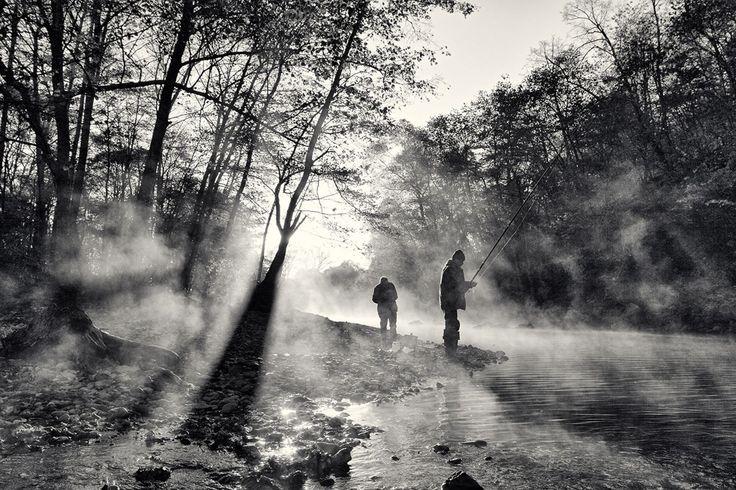 Best of the day  Photo: За пеструшкой Photographer: Андрей Германович Селиванов http://photoliga.com/photos/2908039  More best photos here:  http://photoliga.com/photos  #bestfoto #bestofthebest #photographer #topphoto #photography #photoligacom #bestfotooftheday