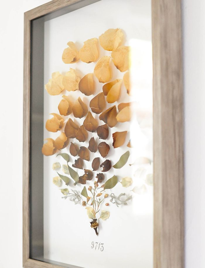 a new bloom - design, food, style, diy: DIY Dried Flower Shadow Box + The Best Gift
